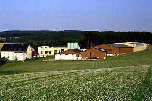 Gebirgsbauernhof